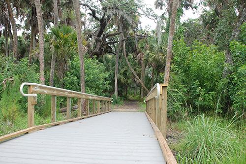 Walking Tour - Spoonbill Marsh