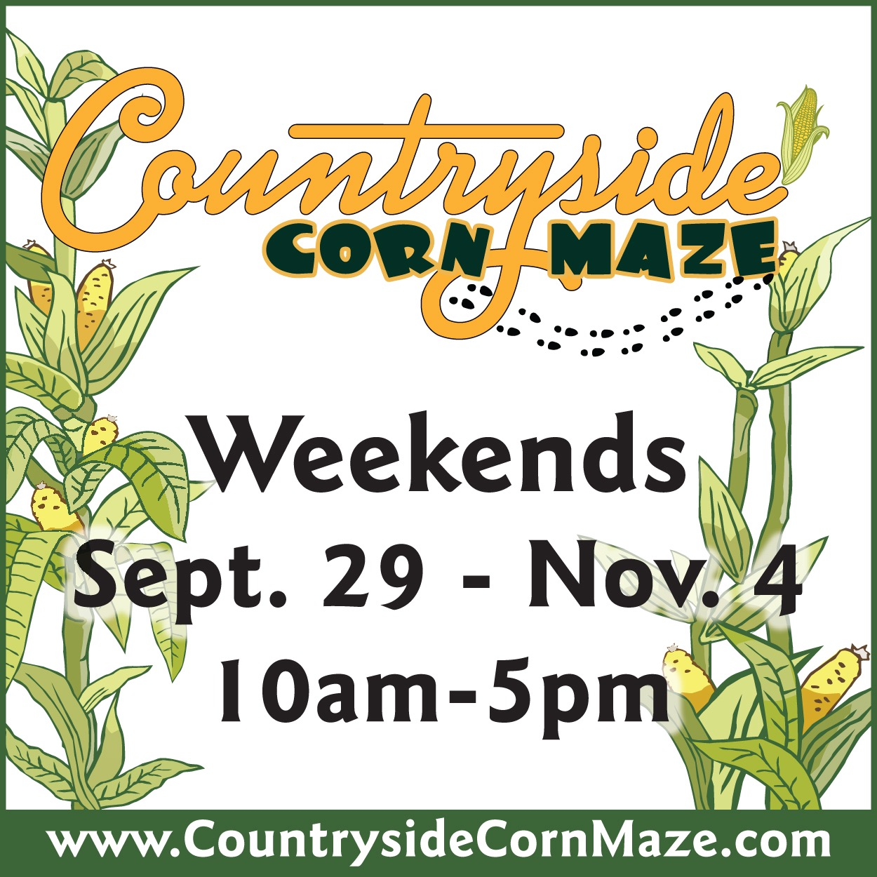 Corn Maze at Countryside Citrus