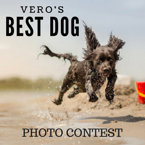 Vero's 5th Annual Best Dog Photo Contest